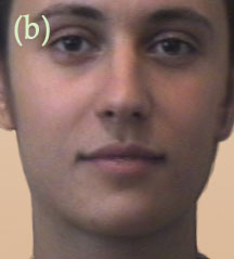Morph middle frame without beard
